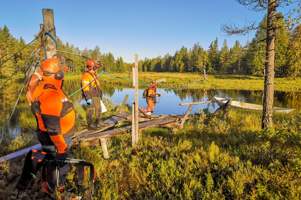 Forestry management project service
