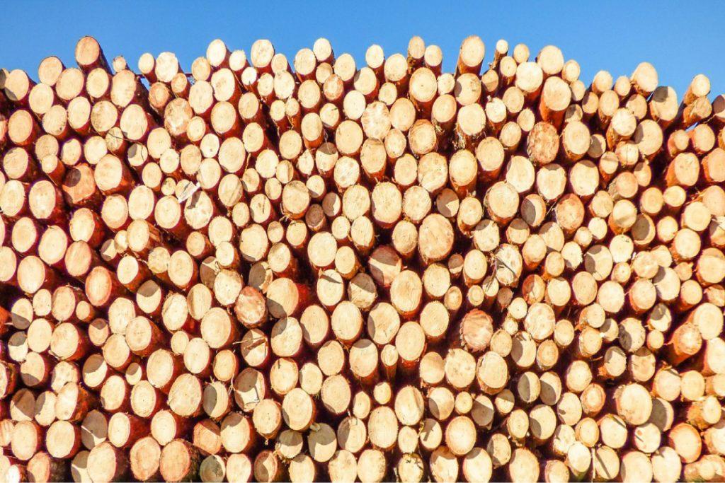 Puukauppa puunmyyntisuunnitelma