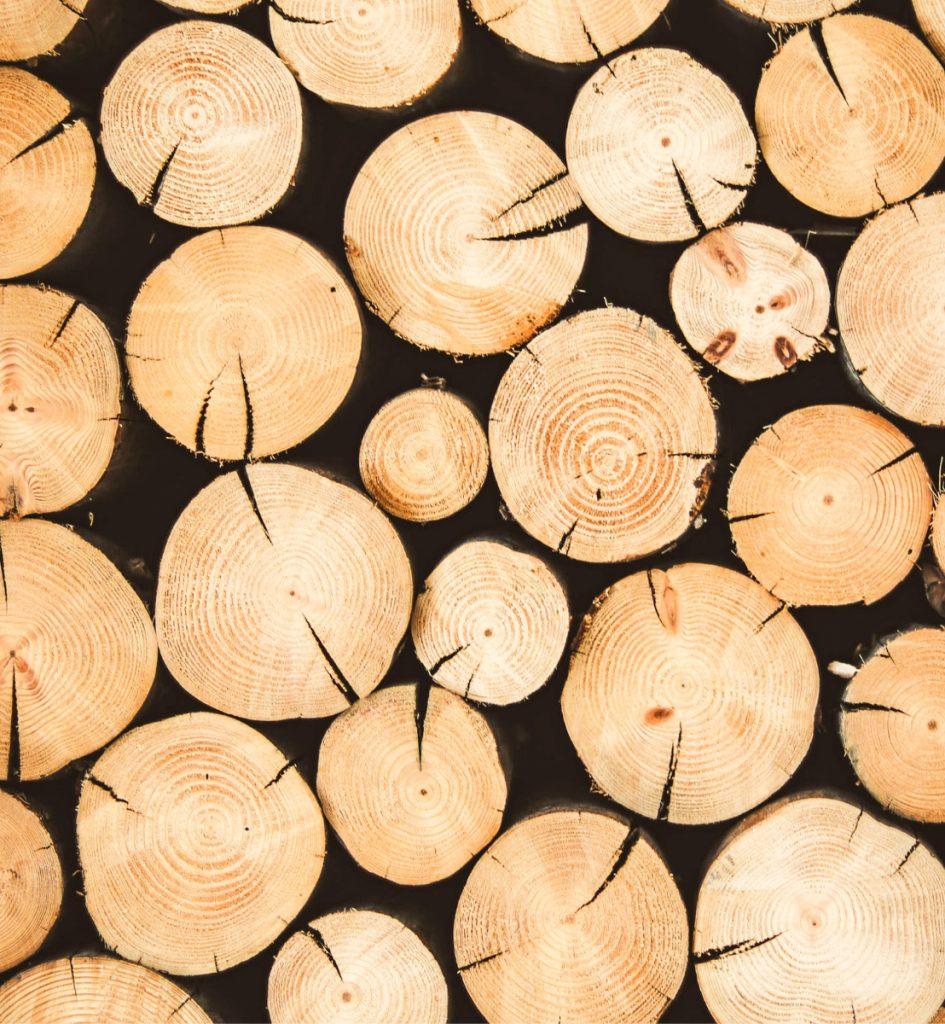 Puukauppa tukki hinta